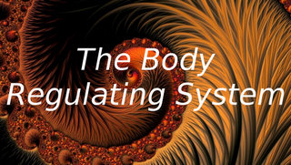 Link to The Body Regulating system page